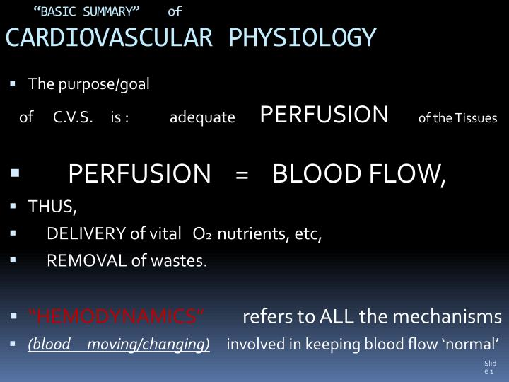 basic summary of cardiovascular physiology n.