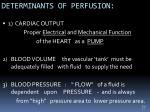 determinants of perfusion
