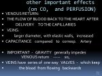 other important effects on co and perfusion