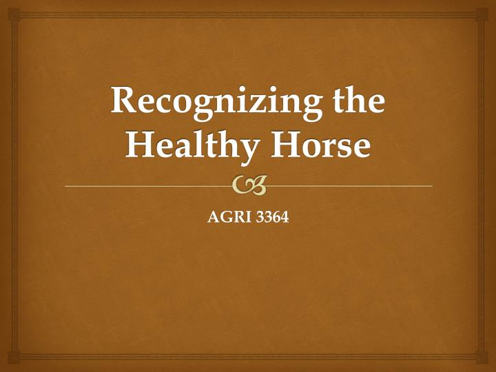 recognizing the healthy horse n.