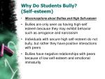 why do students bully self esteem2