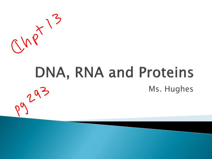 dna rna and proteins n.