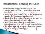 transcription reading the gene