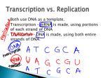 transcription vs replication