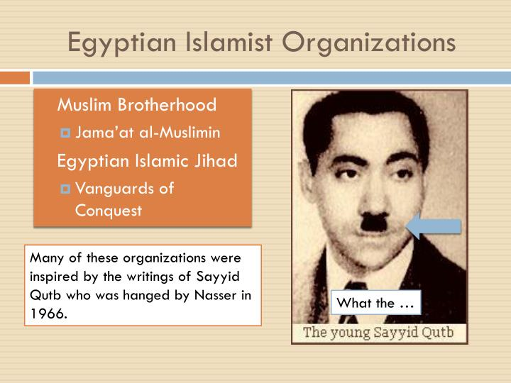 Egyptian islamist organizations