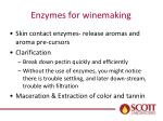 enzymes for winemaking
