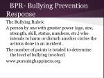 bpr bullying prevention response