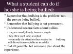 what a student can do if he she is being bullied