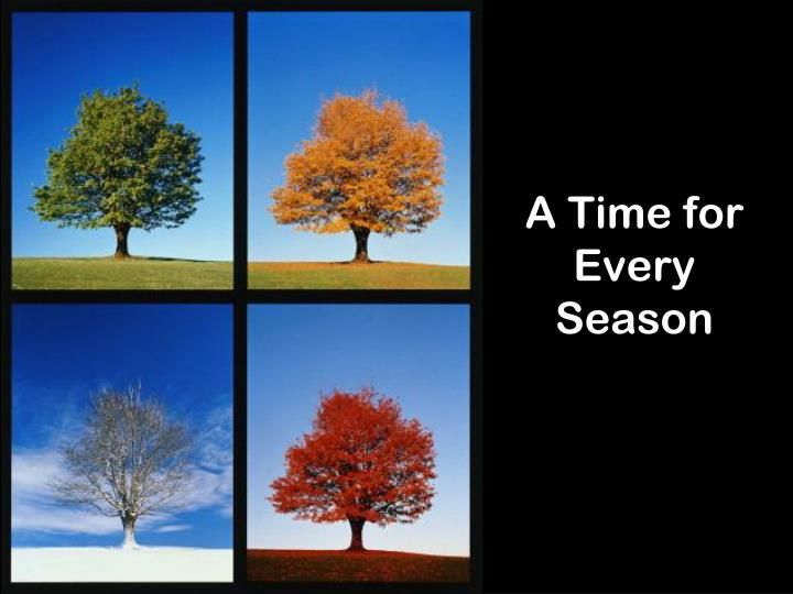 a time for every season n.