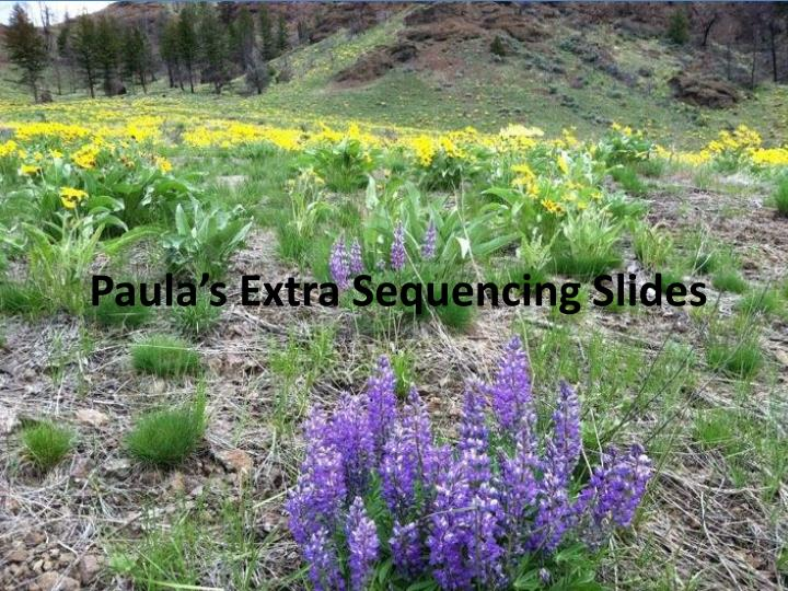 paula s extra sequencing slides n.