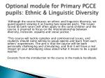 optional module for primary pgce pupils ethnic linguistic diversity