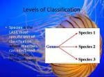 levels of classification2