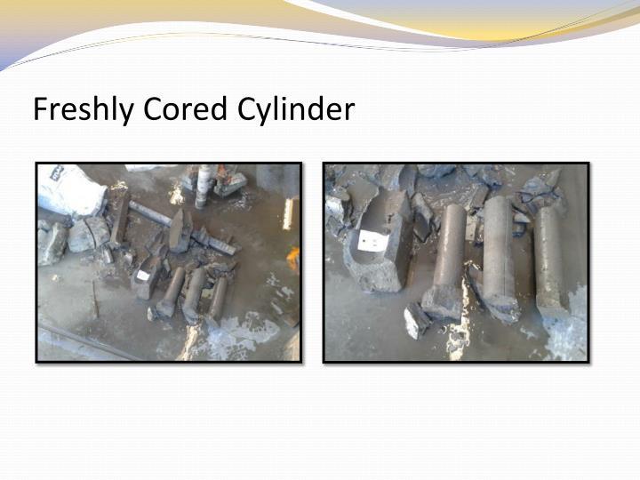 Freshly Cored Cylinder