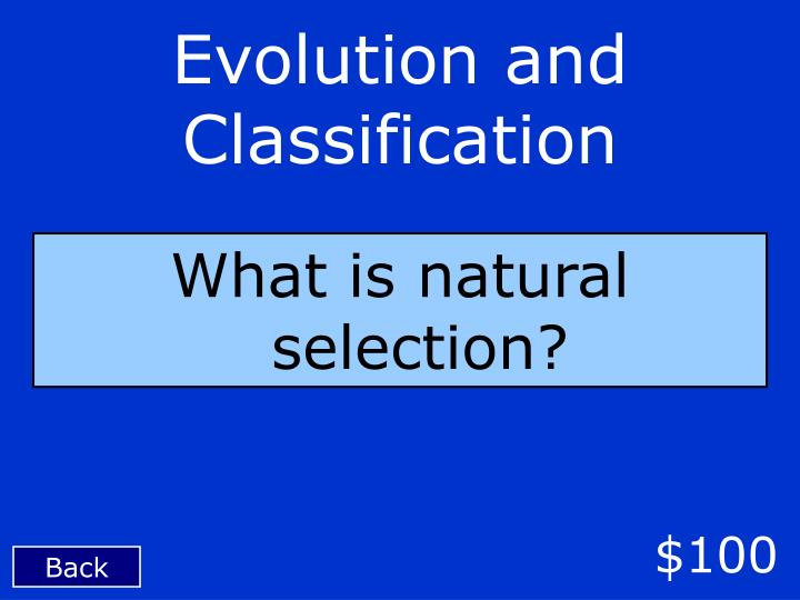 Evolution and Classification