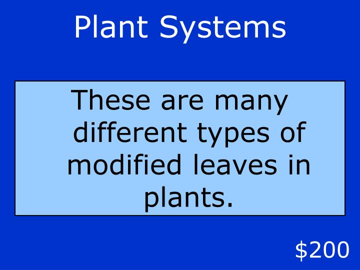 Plant Systems