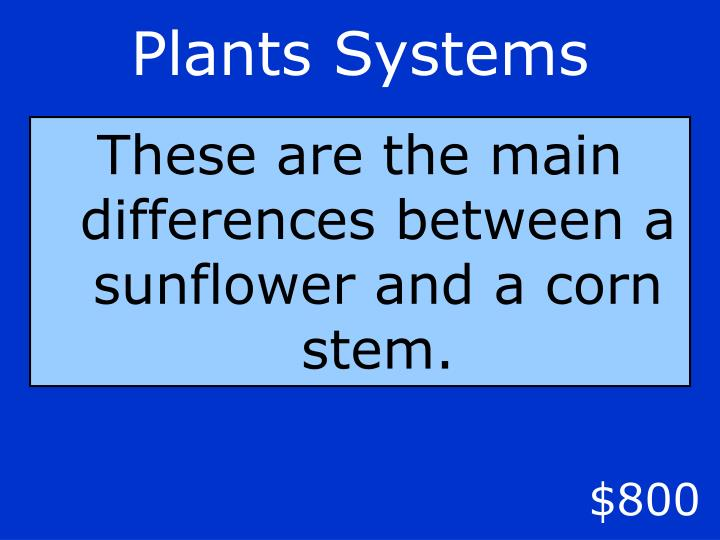 Plants Systems