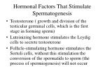 hormonal factors that stimulate spermatogenesis