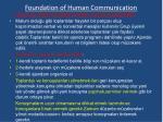 foundation of human communication23