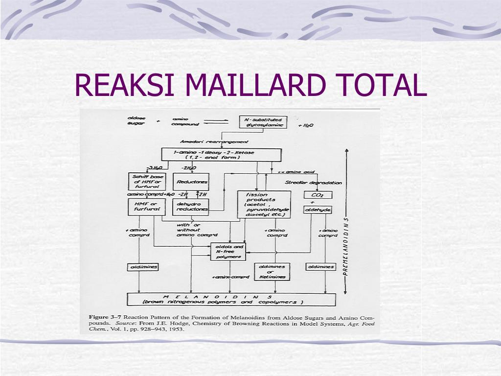 Reaksi Maillard Ebook