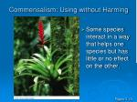 commensalism using without harming