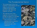 the fundamental niche