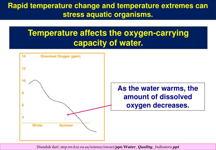 Rapid temperature change and temperature extremes can stress aquatic organisms.