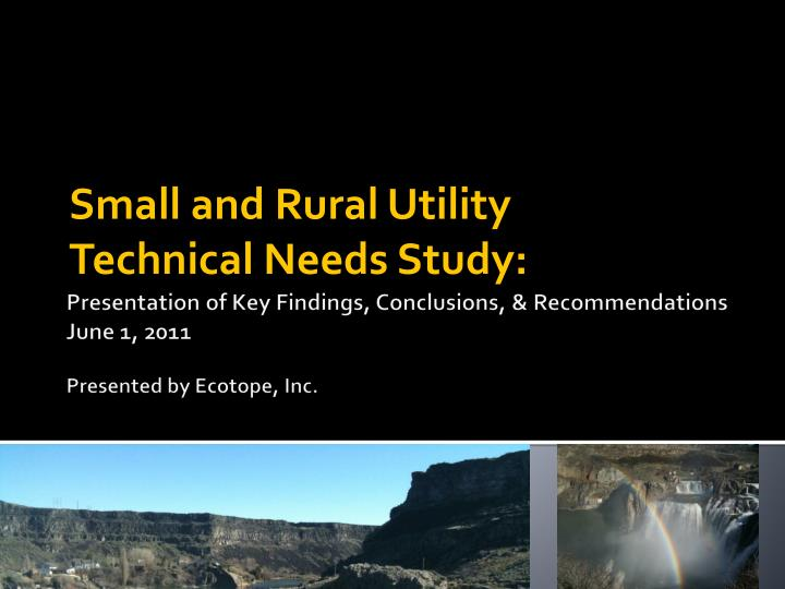 Small and rural utility technical needs study