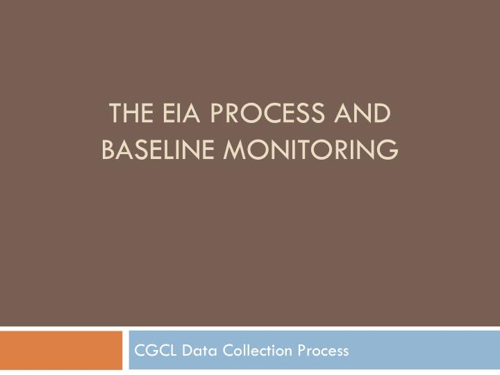 the eia process and baseline monitoring n.