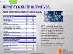 identify c suite incentives
