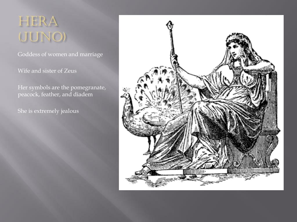 Ppt Introduction To The Olympian Gods Powerpoint