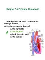 chapter 14 preview questions1