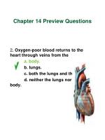 chapter 14 preview questions3