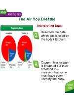 the air you breathe2