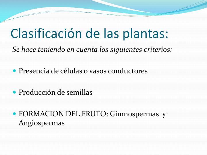 Clasificación de las plantas: