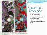 vegetations kortl gning