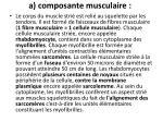 a composante musculaire