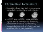 introduction foraminifera
