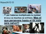 mateo24 12 13