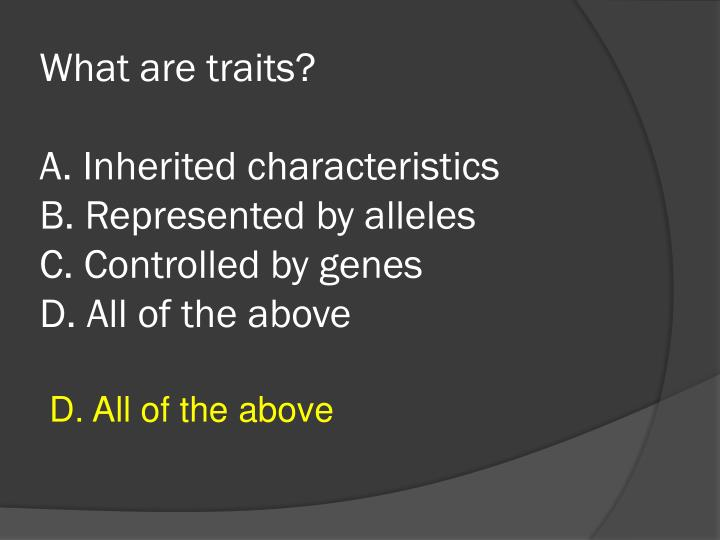 What are traits?
