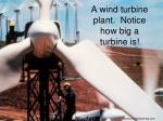 a wind turbine plant notice how big a turbine is