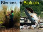 biomass or biofuels
