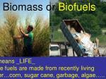biomass or biofuels1