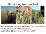 harvesting biomass fuel1