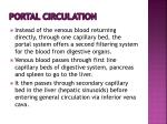 portal circulation