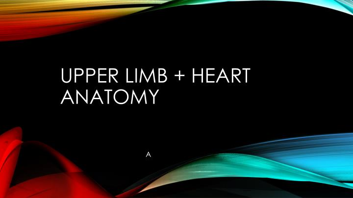 upper limb heart anatomy n.