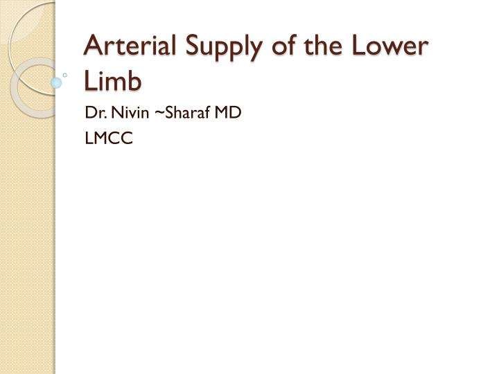 arterial supply of the lower limb n.