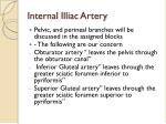 internal illiac artery