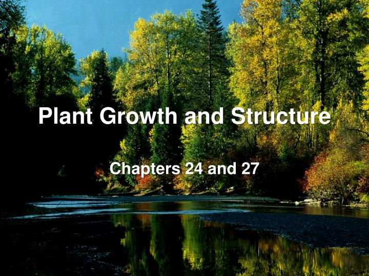 plant growth and structure n.