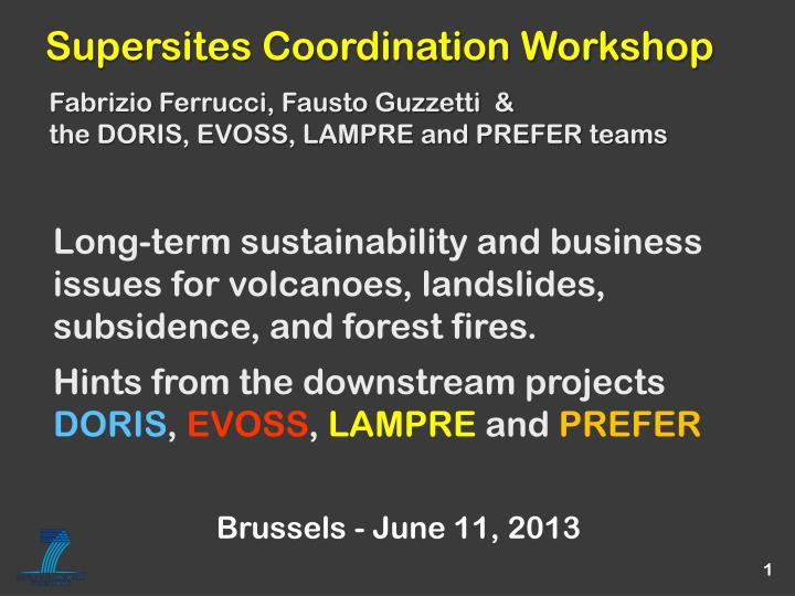 Supersites Coordination Workshop