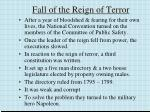 fall of the reign of terror